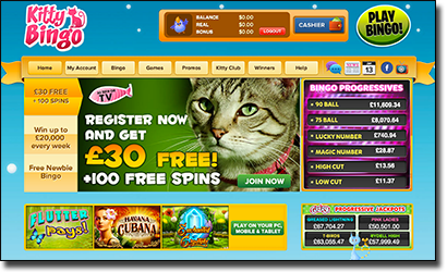 Kitty Bingo - Top Real Money AUD Housie Site
